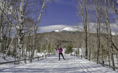 Favorite NH Cross Country Ski Areas